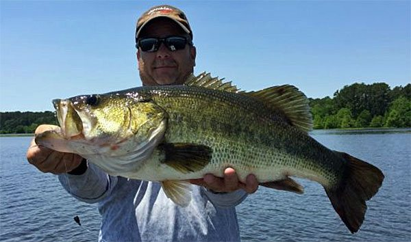 New veggies key in win biggest college bag ever great for Toledo bend fishing