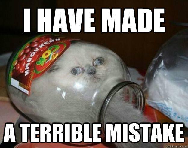 mistake meme cat