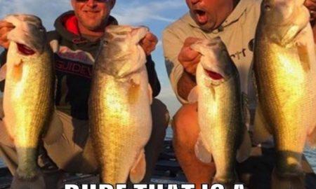 slaunch-zona-bassblaster-bass-fishing-170223