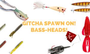 """bass fishing spawn baits"""